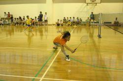 第十七屆大埔盃羽毛球隊際邀請賽 (2007-10-01)